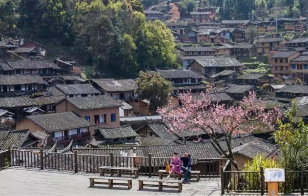 桂峰古民居景区自2017年7月正式启动创建国家4a级旅游景区工作以来