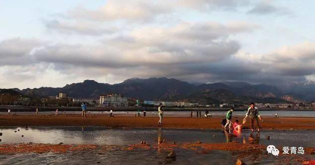 沙子口海滩 自明清时期起,沙子口的渔民以 贩卖海鲜鱼类为生,尤其在