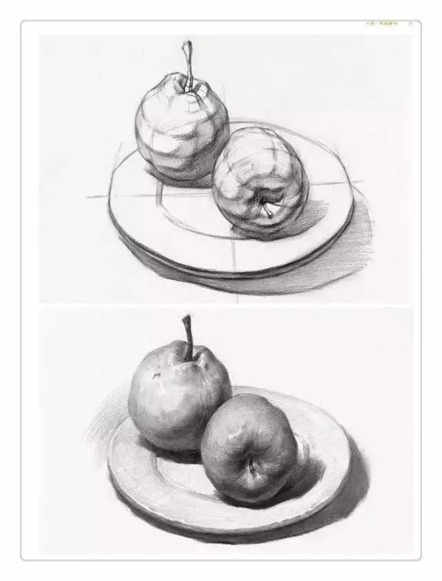 素描苹果,梨子,火龙果,橙子,橘子教程火爆来袭