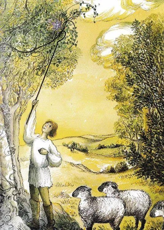 绘本细胞《小牧羊人和水螅》夜莺有几层故事构成图片