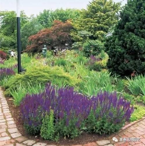 机构植物紫色的花境景观设计折叠元素机械v机构图片