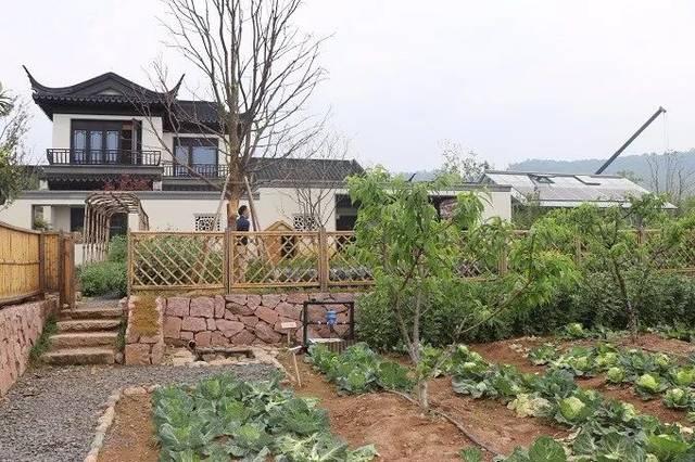 500万回归田园牧歌式生活,徽派独栋小别墅,一亩菜园果园,养鹅听越剧图片