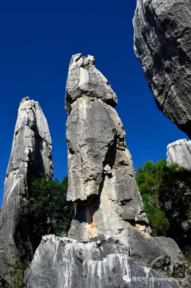 惊叹!神奇的石林象形石图片