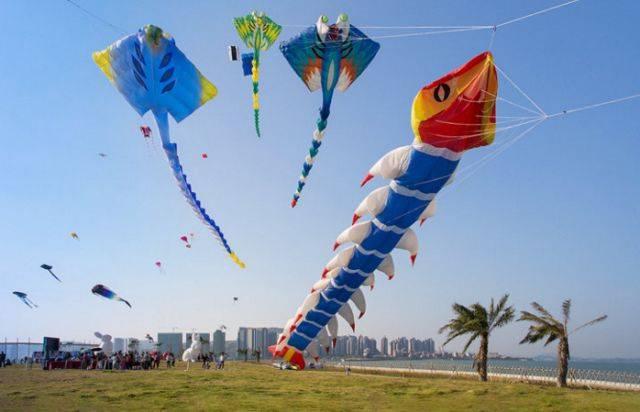 美術大師程迪申講述風箏的那些故事,最后,程老師將會評選出diy優勝獎圖片