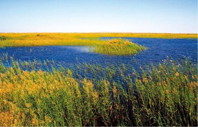 民勤位于甘肃河西走廊东北部,石羊河流域下游,东西北被中国第三、第四大沙漠巴丹吉林和腾格里沙漠包围,总国土面积1.59万平方公里,总人口27.37万人。特殊的地理区位造就了民勤独特的自然风光、奇异的地形风貌,大漠、河流、湿地、戈壁交相辉映。