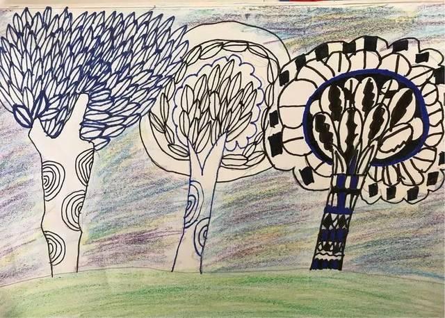 2.5 认识身边的树 肖昭和图片