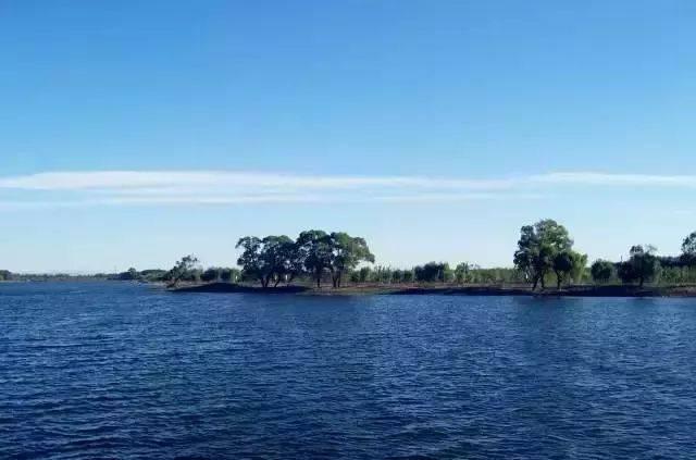 苏州太湖湖滨国家湿地公园图片
