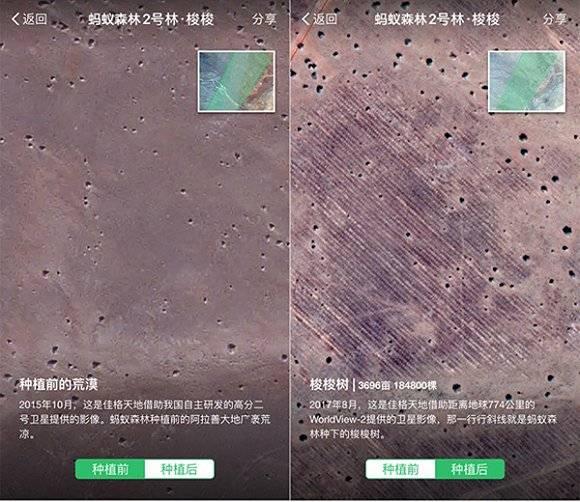 蚂蚁森林卫星看树展示内蒙古荒漠化地区种植前后变化.jpg图片