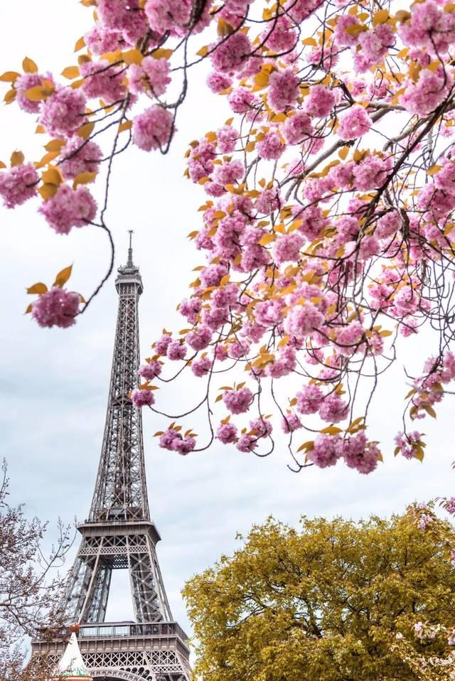 在春暖花开的季节,欧洲的浪漫风情更是发挥到了极致,街头巷角都是弥漫