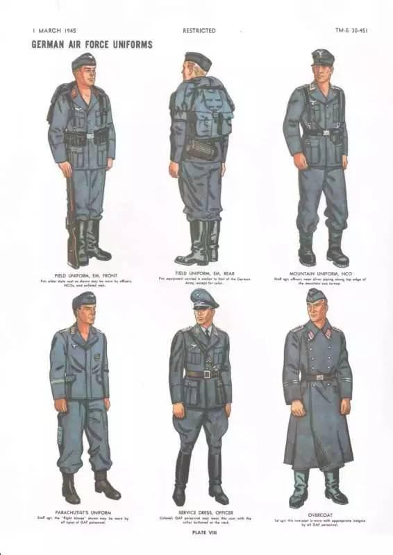 和国防军其他兵种一样,士兵帽徽的三色环不加橡树枝.