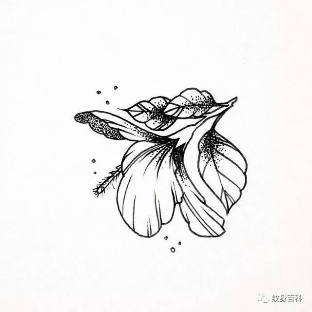 各种植物树叶纹身手稿推荐