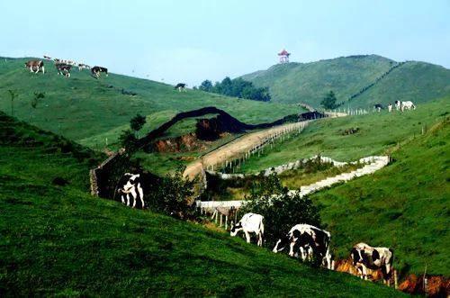 有风景秀丽的城步南山