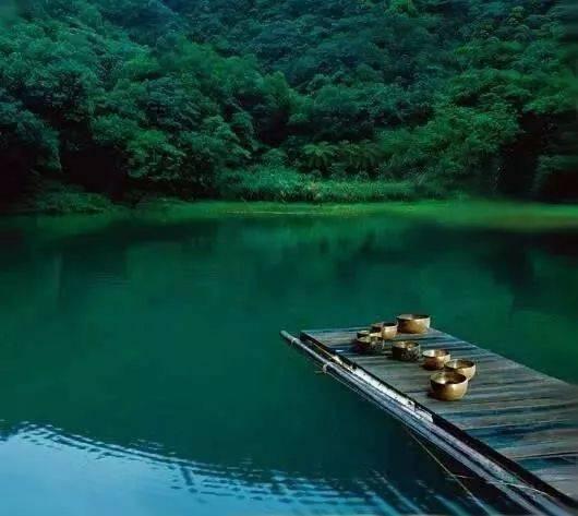 禅意颂钵 静心音乐:《空山秘境》让你感受声音的力量图片