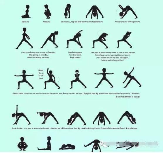 珍贵的流瑜伽体式编排图图片