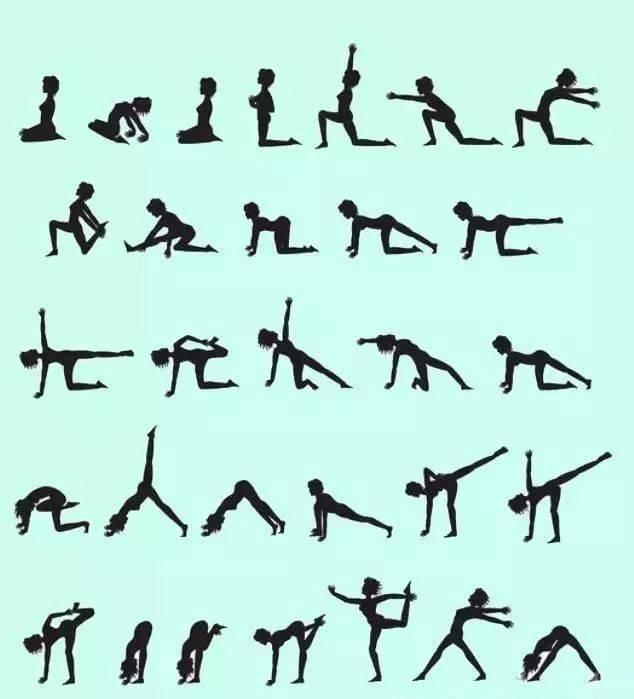哈他瑜伽和流瑜伽图片