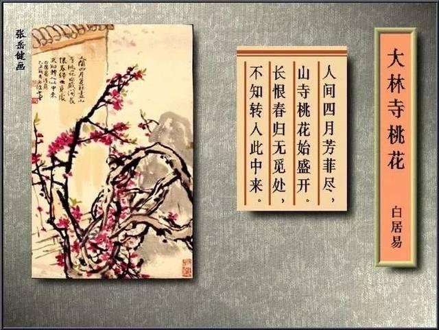 《大林寺桃花》图片