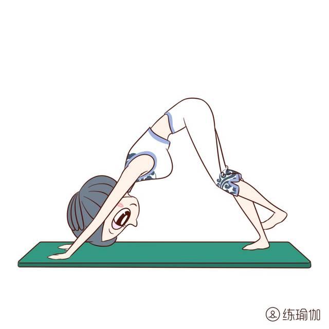 弓式一个后弯体式,它以核心的连接,并为胸部,手臂和腿部提供深度伸展图片
