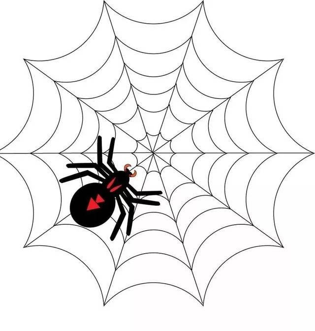 续写蜘蛛开店图片