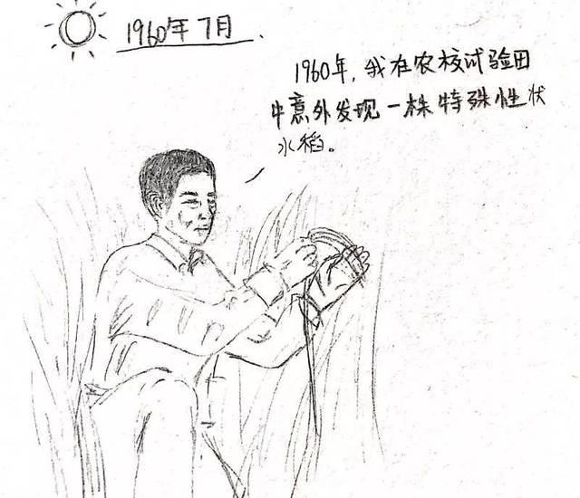 "new漫|学工君带你走进""神农""袁隆平爷爷的世界!"