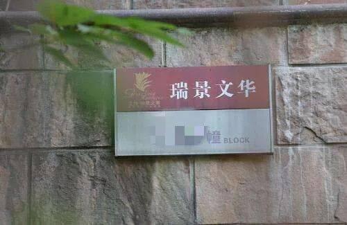 """""""一个死过两次的人?""""南京千万别墅别墅3折v别墅!笔图立面凶宅马克图片"""
