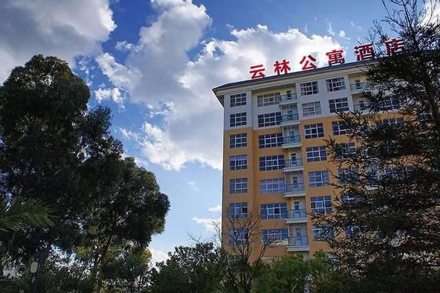 高考学子凭高考准考证及本人身份证,入住 石林银瑞林国际大酒店可在石图片