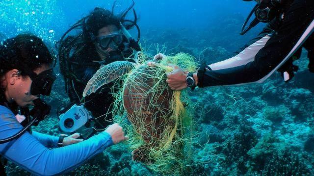 世界上最大的垃圾場,不在陸地在海洋,未來垃圾會比魚還多圖片