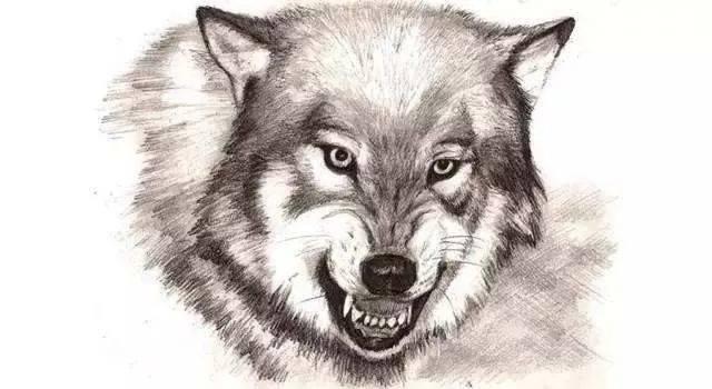 一位狼性店长:管理,就是要淘汰人渣!