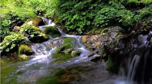 广元水磨沟,一个隐匿在崇山峻岭的神奇秘境!