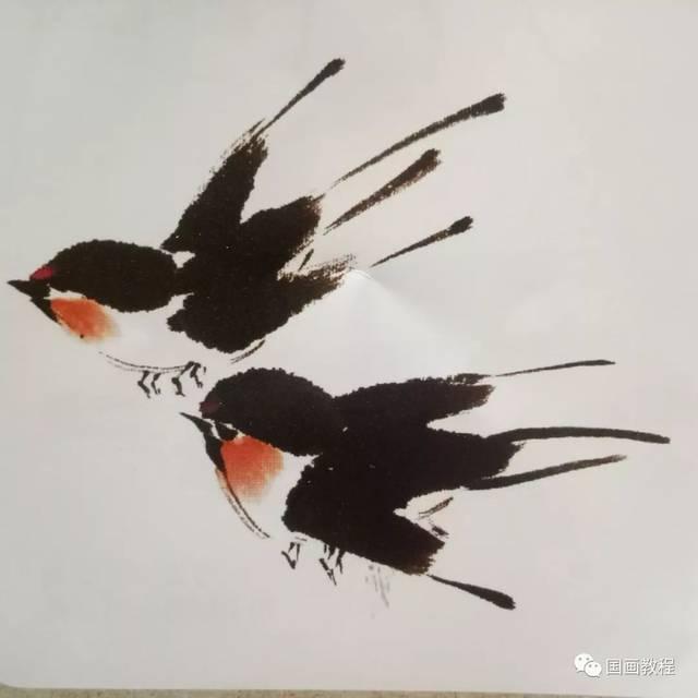 国画基础教程—牡丹和写意花鸟的画法_手机搜狐网图片