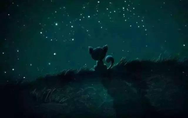 看星星看月亮图片