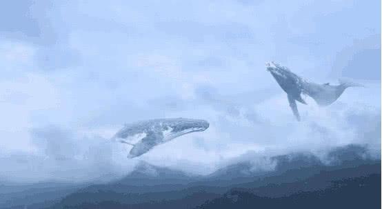 """古语有云:""""北冥有鱼,其名为鲲,鲲之大,不知其几千里也."""