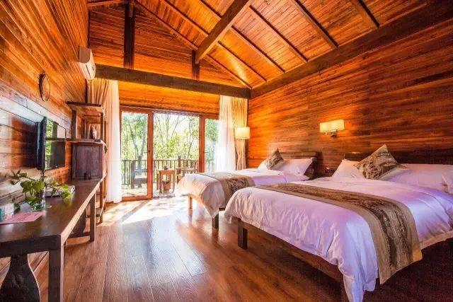 睡360°全景落地玻璃森林木屋,童话里的热带雨林,超仙图片