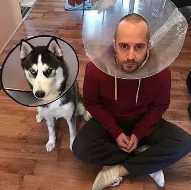 主人�:*ދh^h�_你家狗以为它是你亲生的?那是因为你们长得太像了!