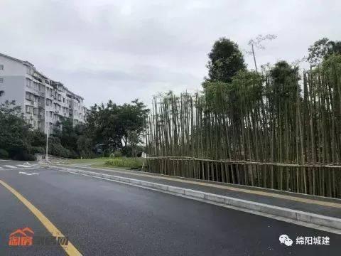 改造前后的绵阳城市道路