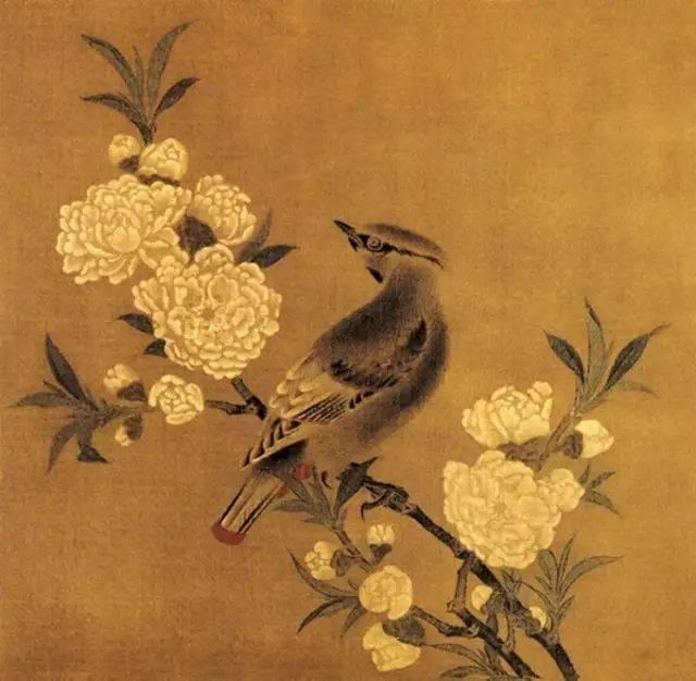 竹质感手绘