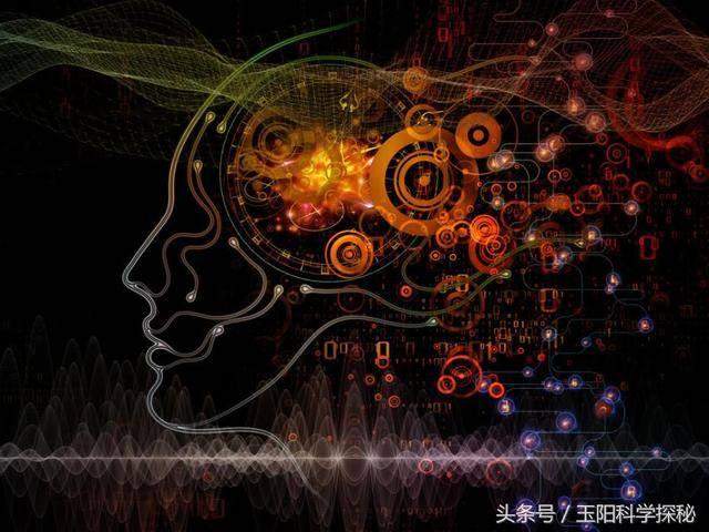 科学研究发现人类记忆系统除了大脑之外还存在第二个!图片