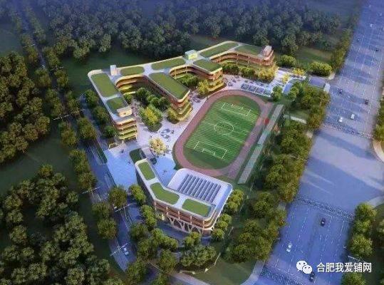 合肥滨湖科学城规划曝光,小庙打造特色民宿小镇图片