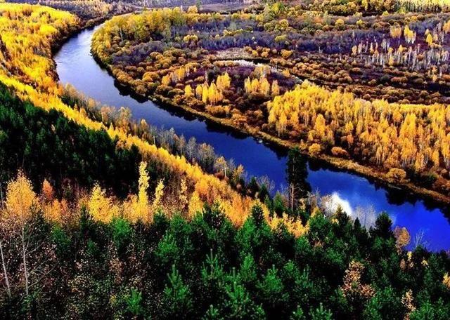"""""""中国森林认证""""让非木质林产品溢价10%-15%!图片"""