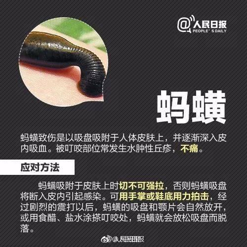 皮肤破损可以购买季德胜蛇药片来进行处理.