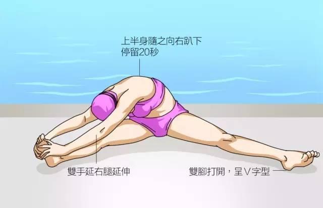 游泳人必看!游泳前全身拉伸图解大全