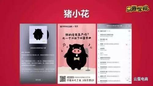 《黑猪宇宙大碟》,猪小花表情包,黑猪新闻联播,策划猪小花时装周走秀