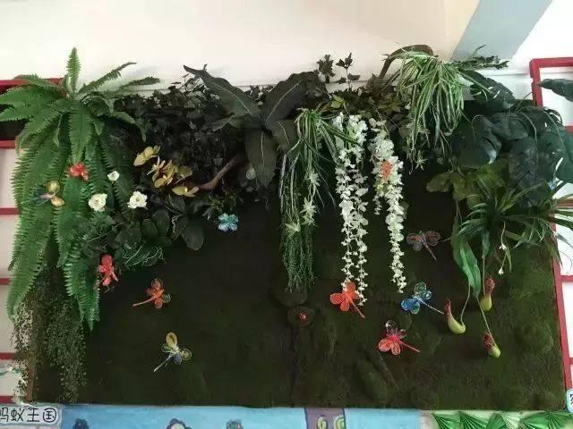 【环创布置】幼儿园植物角新玩法,让种植成为孩子探索
