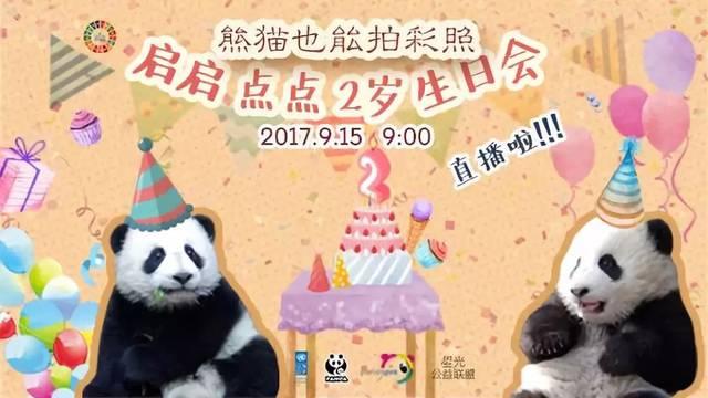 熊猫明信片,联合国请你来设计