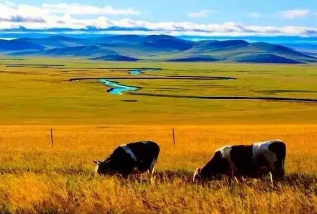 降央卓玛《谁见过梦中的草原梦中的河》,妙不可言的天籁之音!
