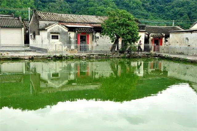 潮州意溪梦林农庄_潮州这个村庄绿水青山,成群的小鸟钟爱它!