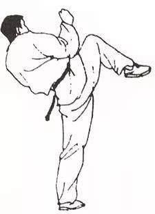 散打和跆拳道共有的绝杀武器——鞭踢_手机搜狐网图片