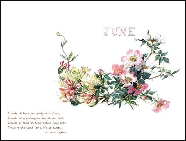三联手账精选霍尔登绝美手绘图,手写体英文诗句,精致书签,让你在春去