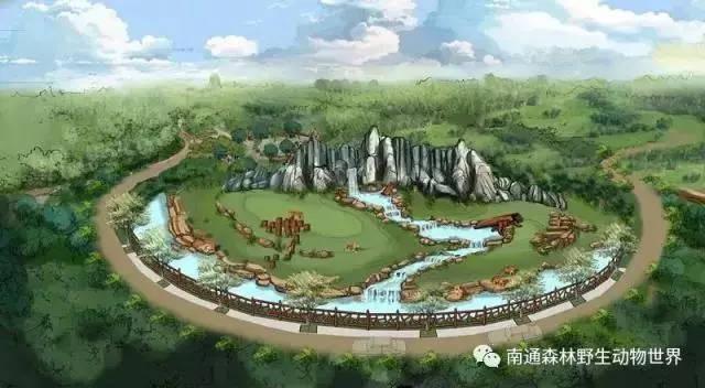 南通:除了植物园,我们今年还有森林野生动物园,湿地公园