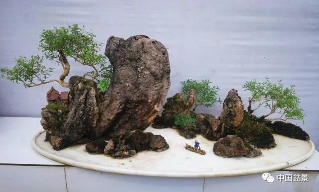 抖��il�f_题名:艳滪回澜  石种:龟纹石  树种:地柏  规格:120cm*60cm*45cm