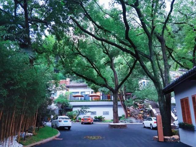 """五环烟树是西湖新九溪之一,俗称""""十景十八涧"""".东别墅九溪北京二手图片"""